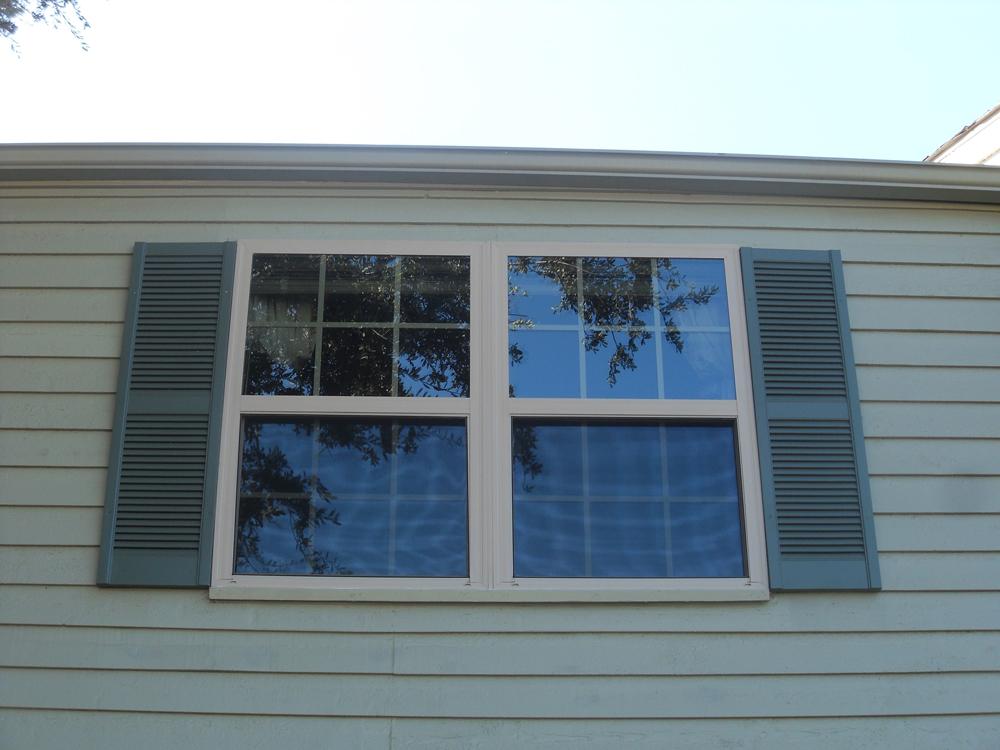 Residential Live Oak